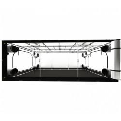 Secret Jardin Intense 600 - 600x360x240 cm