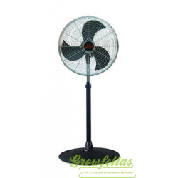 Ralight standing fan