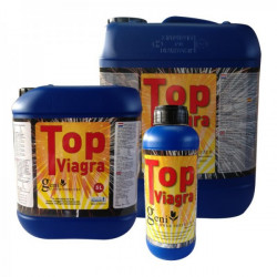 Geni Top Viagra PK-booster