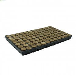 Speedgrow stekplug 126 st. op tray | 11 trays p/doos