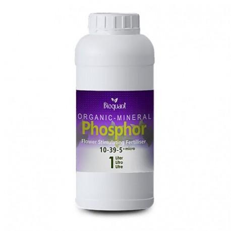 Bioquant OM Bio Phosphor