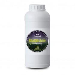 Bioquant Bio Silicium