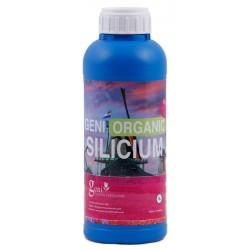 Geni Silicum