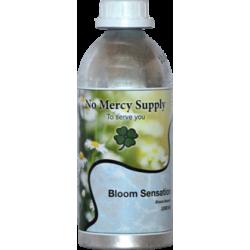 No Mercy Bloom Sensation
