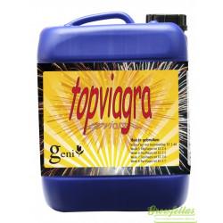 Top Viagra  2.5 Liter