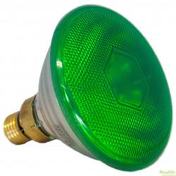 Sylvania Par 38 Nachtlamp